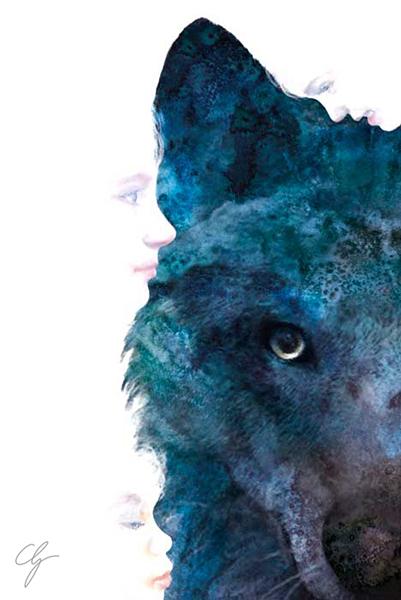Illustrazione sguardo lupo