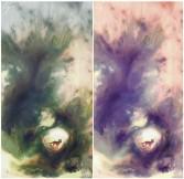 Studi colore illustrazione volpe in acquerello latte e digitale